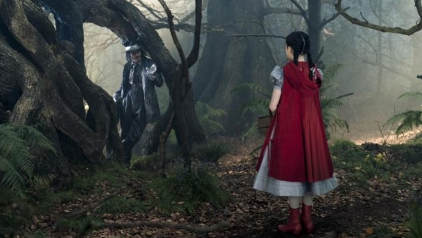 Into the Woods Header